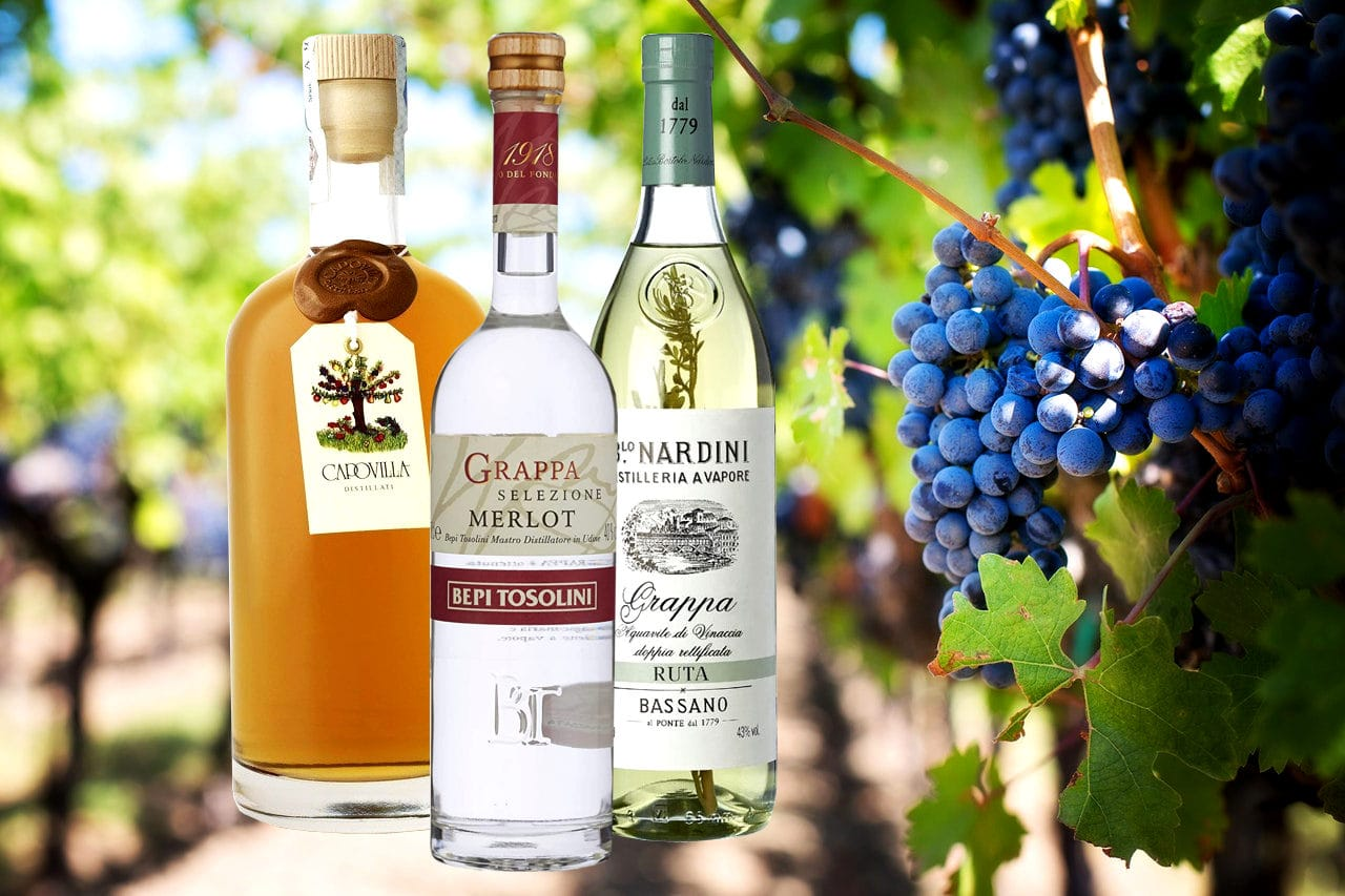 Best Italian Grappa Brands